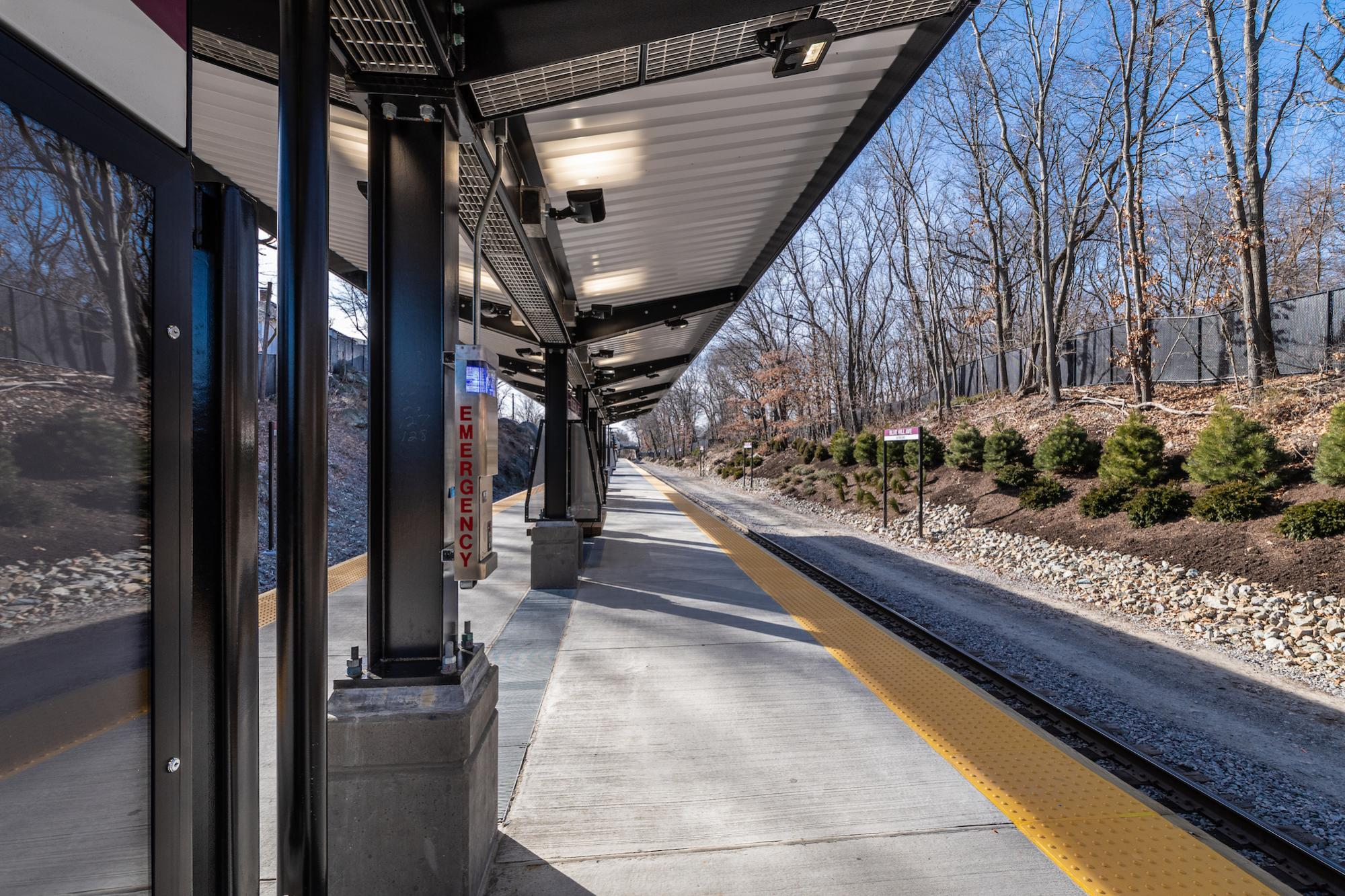 Station platform with canopy (January 2019)