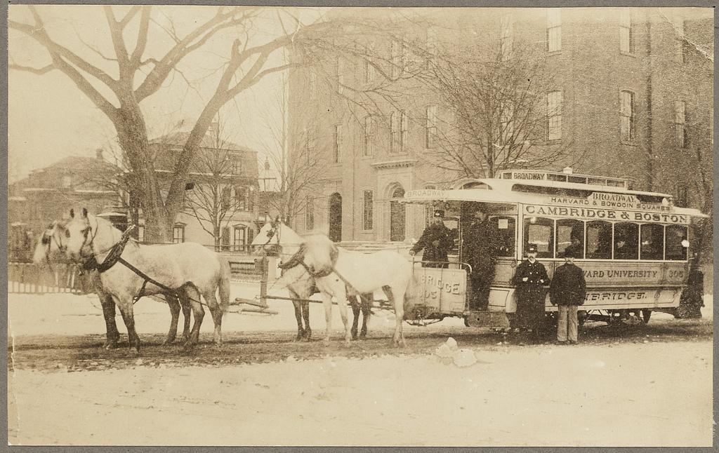 horse drawn carriages in boston