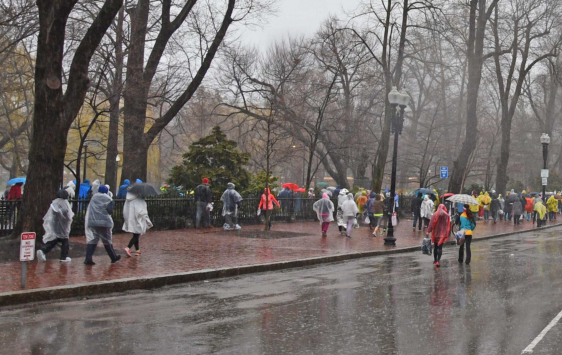 A rainy day, with umbrella-carrying pedestrians walking on the sidwalks flanking the public garden
