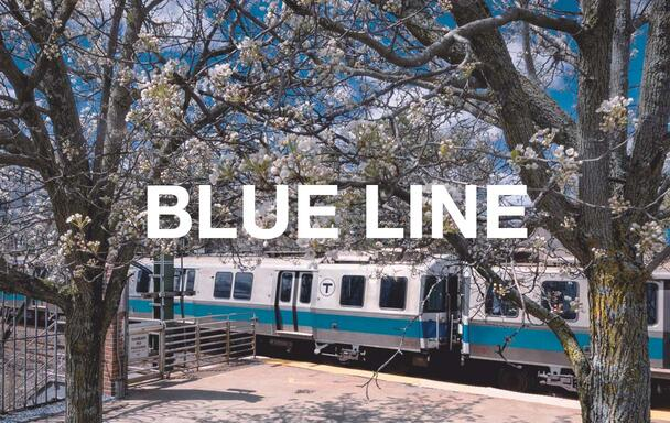 "A Blue Line train in the background, with flowering trees in the foreground, during spring. Overlaid text reads ""Blue Line."""